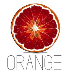 juicy vitamin fruit orange citrus vector image