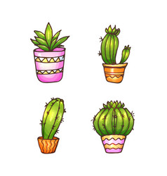 Cactus and succulents vector
