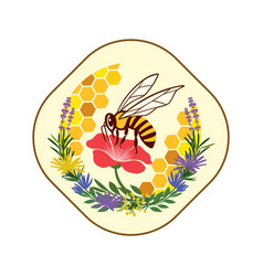 honey label with bee and flowers vector image