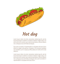 hot dog junk food poster meal vector image