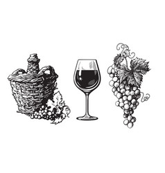 old demijohn glass wine bunch grapes in vector image