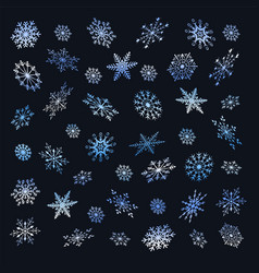 set of christmas snowflakes on a dark background vector image