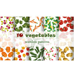 10 mixed vegetables seamless patterns set tomato vector image