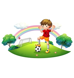 A boy in a soccer field vector image