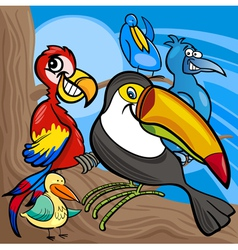 cute birds group cartoon vector image vector image