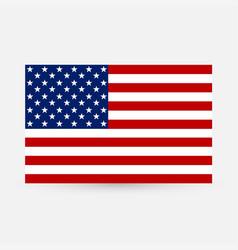 american flag image of american flag american vector image
