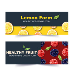 Banner design with classic fruits theme creative vector