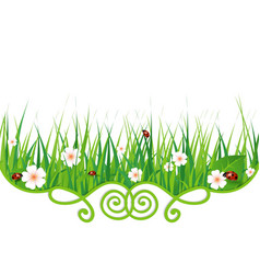 Flowers grass and ladybugs vector