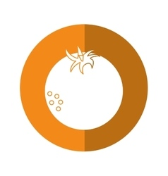 Fresh orange fruit nature yellow circle shadow vector