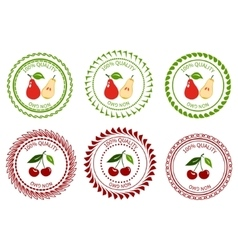 Logo pear and cherry vector