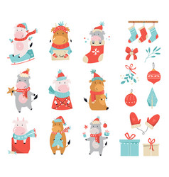 set cute holidays cows and bulls in winter vector image