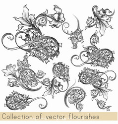set of calligraphic flourishes and swirls vector image