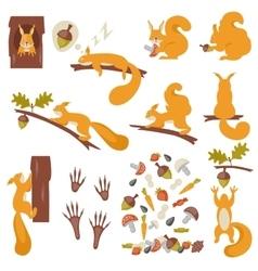 Set of squirrels cartoon squirrels vector