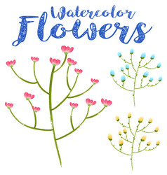 Watercolor painting of colorful flowers vector