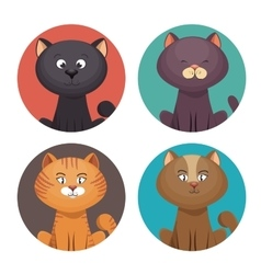 cute set kittens pet shop vector image