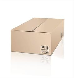 Unpacking cardboard box with fragile symbol vector image vector image