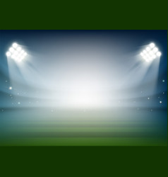 Blank football field on the stadium sports vector