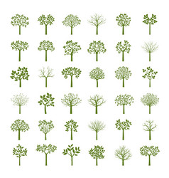 Collection of green trees and leafs vector