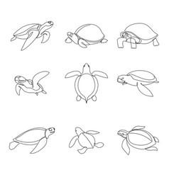 continuous line turtle set vector image