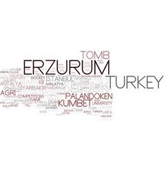 Erzurum word cloud concept vector