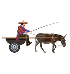 man with in donkey cart vector image