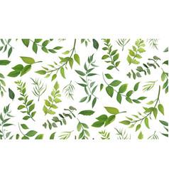 seamless pattern eucalyptus palm fern vector image