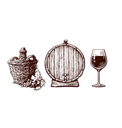 Set hand drawn elements for wine design vector