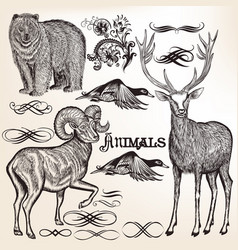set of detailed animals for design vector image