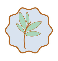 symbol plants with leaves icon image vector image