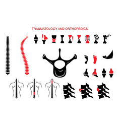 Traumatology and orthopedics full set vector