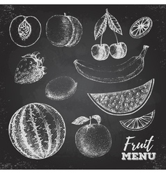 Vintage chalk drawing set of fresh fruits sketch vector image