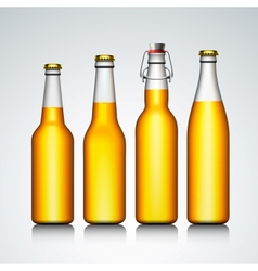 Beer bottle clear set with no label vector image vector image