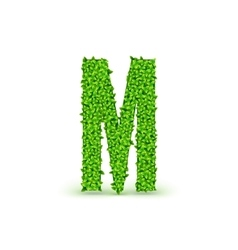 Green leaves font m vector