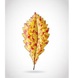 Autumn colorful leaf vector