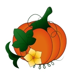 Autumn Pumpkin and leaves cartoon vector image