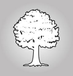 big tree silhouettes vector image