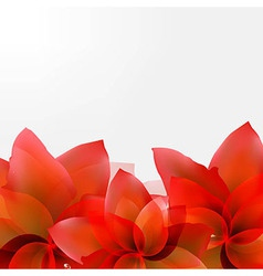 Borders Of Abstract Red Tulips vector image