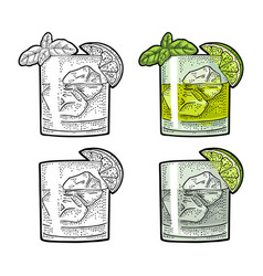 Cocktail gin wih basil and lime vintage color vector