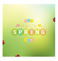 hello spring background with colorful ladybugs vector image