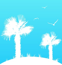Summer background with palm trees and seagulls vector image