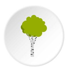 Birch icon circle vector