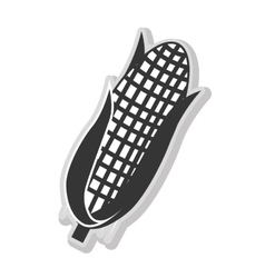 Corn vegetable isolated flat icon vector