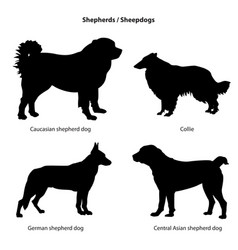 dog breed silhouette pet icon set sheped vector image