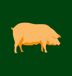 In flat style pig vector