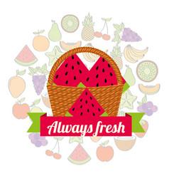 label wicker basket with always fresh watermelon vector image