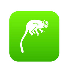 Marmoset monkey icon digital green vector