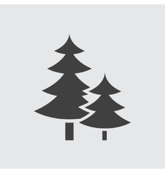 Spruce icon vector image vector image