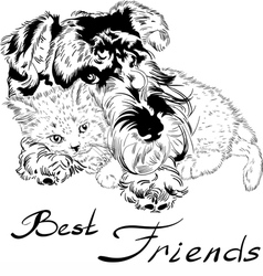 Sweet dog with cute kitten hand drawing vector image vector image