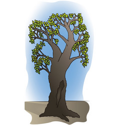 Branchy tree with hollow trunk vector