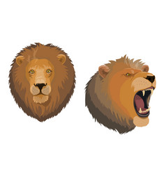 Lion animal head angry roaring leo face vector